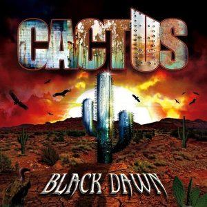 black-dawn-cactus