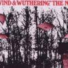 Vietor sa búri a je radosť ho počúvať