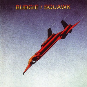Squawk Book Cover