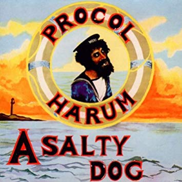 A Salty Dog Book Cover