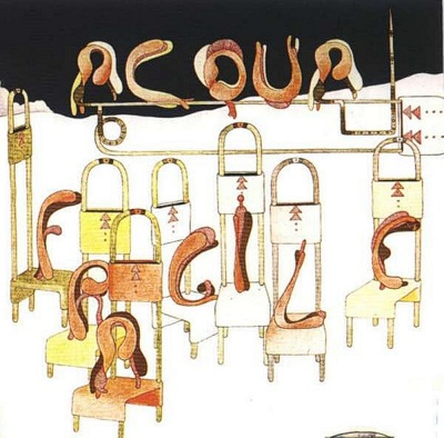 Acqua Fragile Book Cover