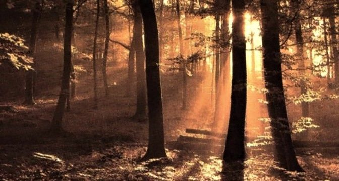 ASTRALIS – Voces del Bosque (2009)