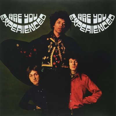 Are You Experienced Book Cover
