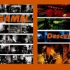 Gargamel – Descending (2009)