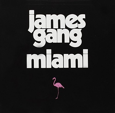 Miami Book Cover