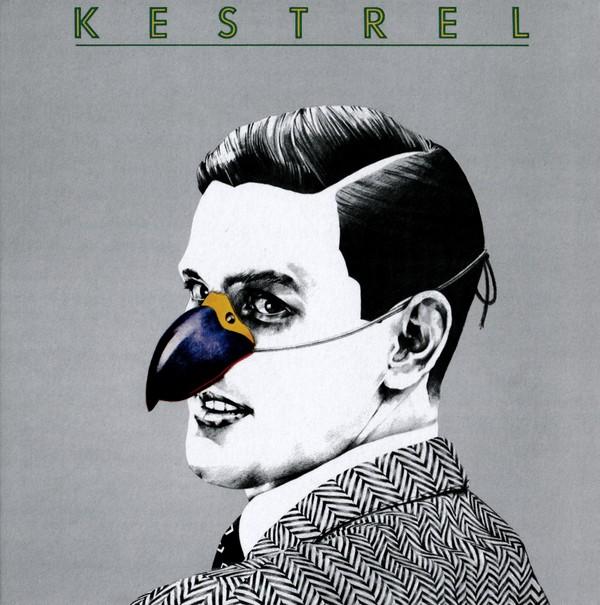 Kestrel Book Cover