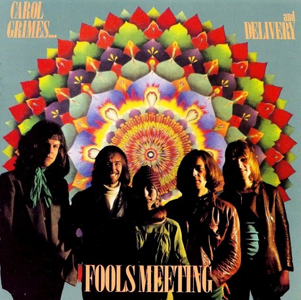 Fools Meeting Book Cover